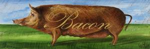 Bacon by Gigi Begin