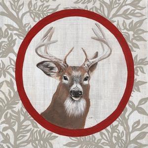 Deer Portrait by Gigi Begin