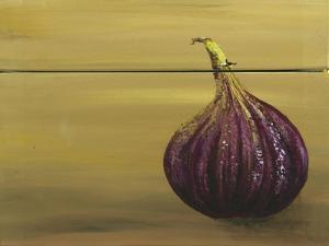 Red Onion on a Box by Gigi Begin