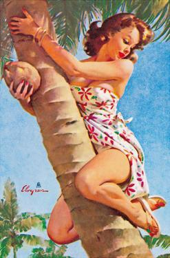 Pick of the Crop (Up a Tree) - Hawaiian Pin Up Girl by Gil Elvgren