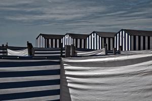 Territorial Behavior by Gilbert Claes