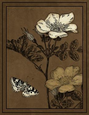Gilded Blossom IV