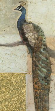 Gilded Peacock II