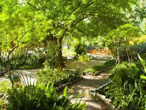 Alameda Gardens, Gibraltar, Europe by Giles Bracher