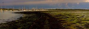 The Old Road, Emsworth, Chichester Harbour, West Sussex, England, United Kingdom, Europe by Giles Bracher