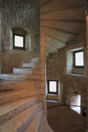 Château de Fougères-sur-Bièvre, escalier de la tour hexagonale by Gilles Codina