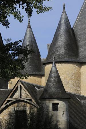 Château de Fougères-sur-Bièvre, toitures de l'aile nord et du donjon by Gilles Codina