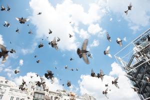 Beaubourg, Centre Georges Pompidou, Paris (4th arrondissement). Square with pigeons. July 17, 2013 by Gilles Targat
