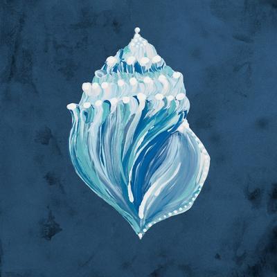 Azul Dotted Seashell on Navy II
