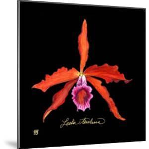 Vivid Orchid II by Ginny Joyner