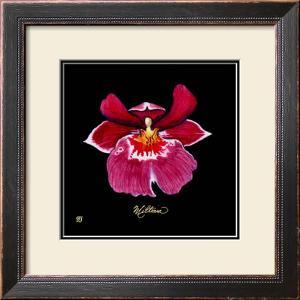 Vivid Orchid VIII by Ginny Joyner