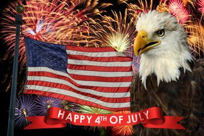 Fireworks Display during Fourth of July with American Flag and Bald Eagle by Gino Santa Maria
