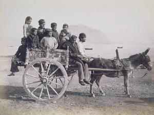 A Crowded Wagon Drawn by a Mule, Palermo, Sicily, c.1880 by Giorgio Sommer