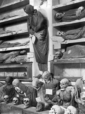 Mummies in the Palermo Catacombs, Italy by Giorgio Sommer