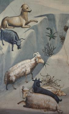 Dream of Joachim, Sheep by Giotto di Bondone