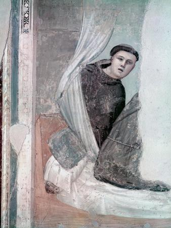 Monk, Detail from the Life of St. Francis Cycle, Bardi Chapel, c.1340 by Giotto di Bondone