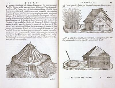 Illustration of Roof Thatching Techniques