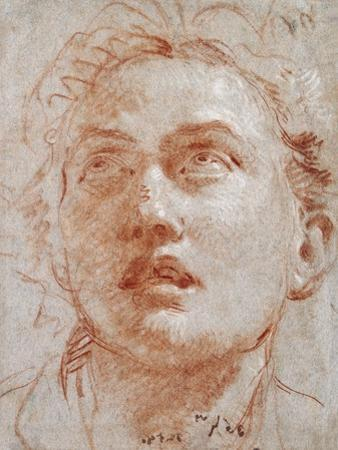 Head of a Man Looking Up by Giovanni Battista Tiepolo
