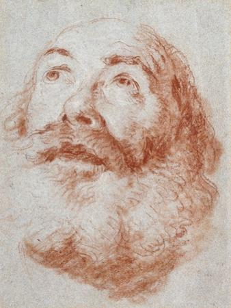 Head of an Old Man Looking Up by Giovanni Battista Tiepolo