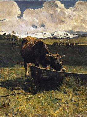 Brown Cow at Trough by Giovanni Segantini