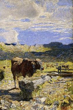 Brown Cow Drinking from a Trough, 1892 by Giovanni Segantini