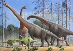 Giraffatitan and Dicraeosaurus Dinosaurs Grazing in a Prehistoric Environment