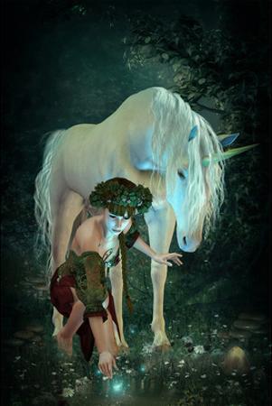 Girl Pond Fireflies & Unicorn