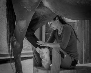 Girl Treats Horse
