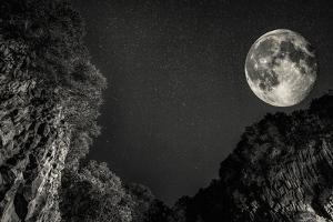 Moon by Giuseppe Torre
