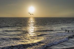 Ocean Waves by Giuseppe Torre