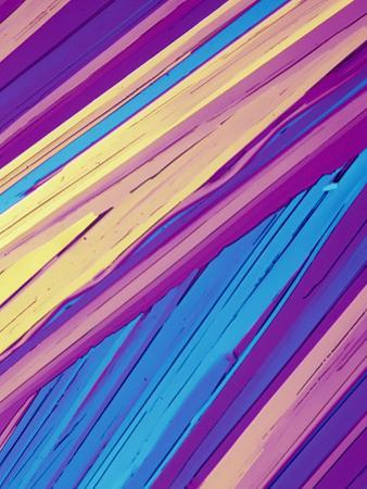 Benzoic Acid Crystals Viewed with Polarized Light, LM X40 by Gladden Willis