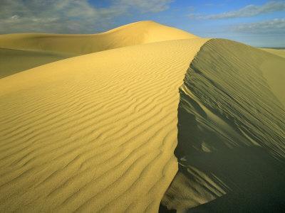 https://imgc.allpostersimages.com/img/posters/glamis-sand-dunes-california-usa_u-L-P42L610.jpg?p=0