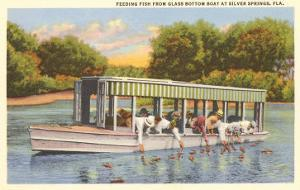 Glass Bottom Boat, Silver Springs, Florida