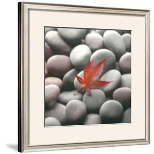 Leaf on Stone by Glen & Gayle Wans