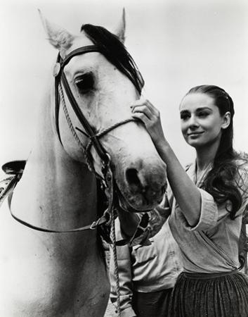 Audrey Hepburn by Globe Photos LLC