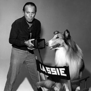 Lassie by Globe Photos LLC