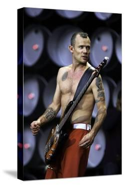 Red Hot Chili Peppers by Globe Photos LLC