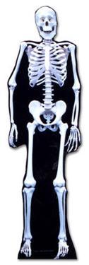Glow In The Dark Skeleton Lifesize Cardboard Cutout