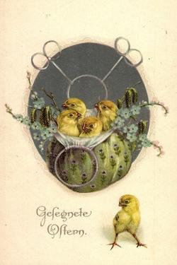Glückwunsch Ostern, Küken in Einem Beutel