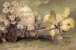 Glückwunsch Ostern, Küken Mit Osterei, Gänseblümchen