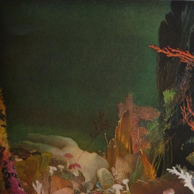 Under the Sea, c1904-1924, (1924)