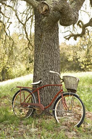 https://imgc.allpostersimages.com/img/posters/go-by-bike-ii_u-L-Q10PU400.jpg?p=0