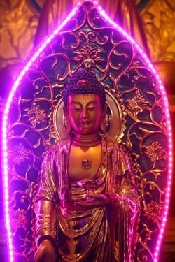 Buddha statue with neon light, Chua Thien Hung Buddhist Pagoda, Ho Chi Minh City, Vietnam, Indochin by Godong