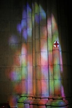 Buen Pastor cathedral, San Sebastian, Euskadi, Spain by Godong
