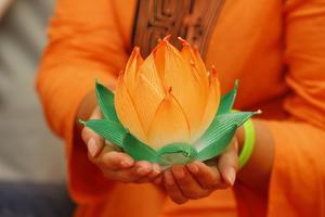 Paper lotus flowers, Seoul, South Korea by Godong