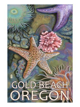 https://imgc.allpostersimages.com/img/posters/gold-beach-oregon-tidepools-c-2009_u-L-Q1GOS570.jpg?p=0