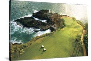 Gold Course On Hawaii Coast