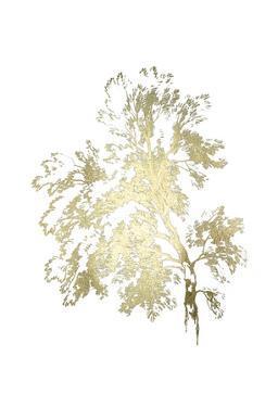 Gold Foil Ash Tree I