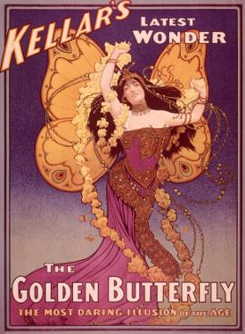 Golden Butterfly Illusion