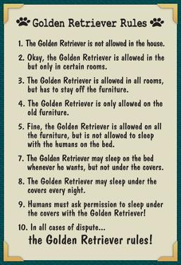 Golden Retreiver House Rules